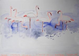 "akvarell \""Flamingod\"" /  aquarelle"
