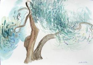"""akverell \""""Olivipuud\"""" / \""""Olive trees\"""" aquarelle"""